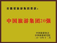 2010年度中国亚博体育app英超买球集团20强
