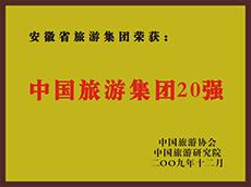 2009年度中国亚博体育app英超买球集团20强