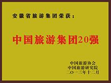 2013年度中国亚博体育app英超买球集团20强